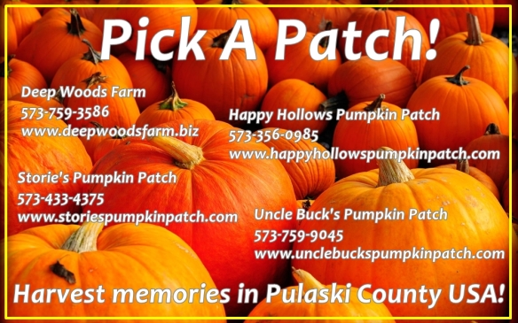 Harvest memories in Pulaski County USA this Autumn!